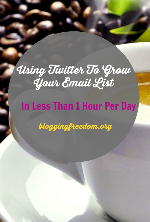 Grow your email list with Twitter!